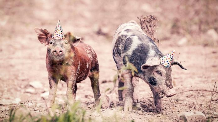 Urodzinowo – 10 rzeczy, których o mnie nie wiecie